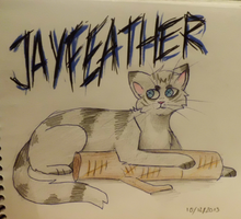 Jayfeather by Raviolios