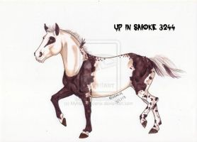 Up In Smoke 3244 -Ref- by Myhorsephoenix