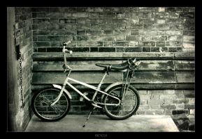 Bicycle by tfavretto