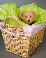 Bear in a Basket by searching4sumthn
