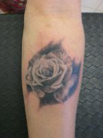 Black and Grey Rose by MSVickery