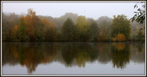 Shades Of Autumn by smolensk65