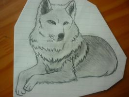 Wolf by Pepsco