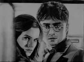 Harry Potter and Hermione by 7gnehzed