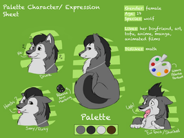 Palette Expression and Character Sheet by Maiximillion3564