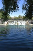 Weeping Willow Waterfall by ShipperTrish
