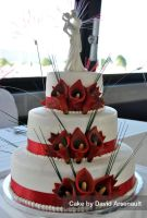 Canada Day Wedding by DavidArsenault