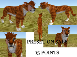 Red Tabby Preset by Warrior-Heart127