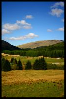 Upper Tyndrum - LesJordans by scottish