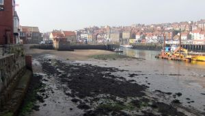 Whitby Harbour (4) by PaulineMoss