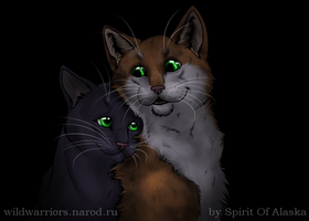 Hollyleaf's Story. Ch. VII by Spirit-Of-Alaska
