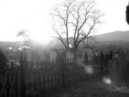 Gated Graveyard by Della-Stock