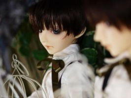Twins of mirror . by solalis1226