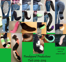 Collage of Tails Made 2013-2014 by PandapardProductions