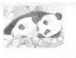 pandas by BurntToast11