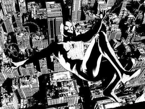 Spidey Black and White by julioferreira
