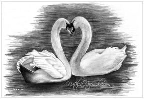 Swan Love by NataliaRafinska