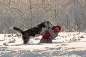 Kids of the Snow by DeingeL-Dog-Stock