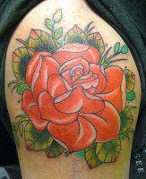 neo traditional rose by michaelbrito