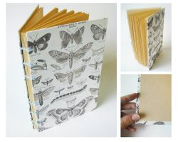 Handmade Sketchbook - Butterflies and Moths by Endless-Ness