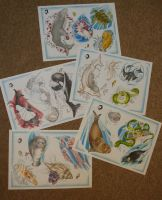 complete sealife tattoo flash by willowtreetattoos