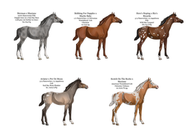 Lineage Foals Art and Point Auction by catheetiem