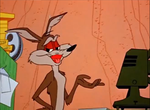 Wile E Coyote and his camera 2 by Bjnix248