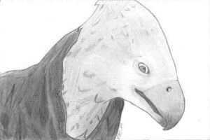 Buckbeak the Hippogriff by GaladrielElvenQueen