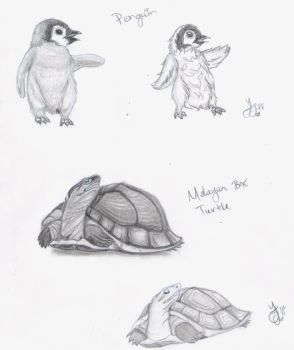 Penguin and Turtle - Realistic and Cartoony by Yukiko-chan