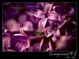 In my mind - 3 by Frall