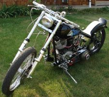 Hog Harley-Davidson Motorcycle by FantasyStock