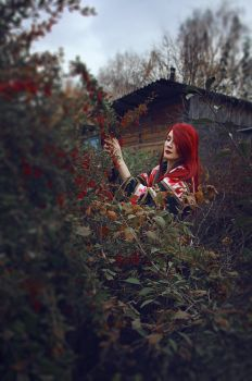 Red garden by MarionetteTheatre