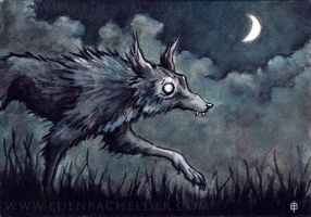 Slinking Wolf Watercolour by shmeeden