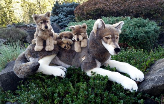 Wolf Family Toy : Browsing dolls plushies custom toys on deviantart