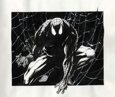 Doodles and Sketches_Spidey by MichaelBair