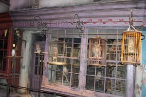 Diagon Alley: Eeylops' Owl Emporium by Skarkdahn