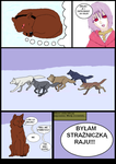WWRWDR str1 by InarianWolf