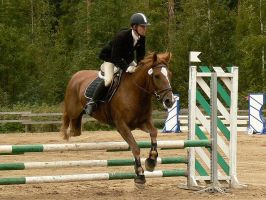 Showjumping 23 by wakedeadman