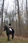 Horse and Rider Stock 02 by MeetMeAtTheLake2Nite