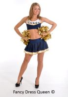 Cheerleader Costume by fancydressqueen