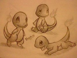 Charmander by Bluekiss131