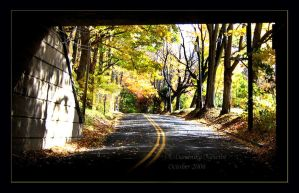 Fall Drive by Goodbye-kitty975