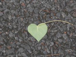 Leaf Heart by Art-of-the-Seraphim