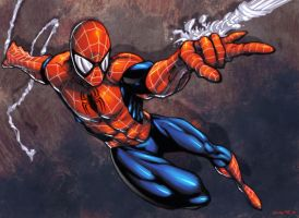 :: PatCs Spidey -Colors ME :: by IvyBeth