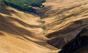 Veins that mean life for our planet by Gautama-Siddharta