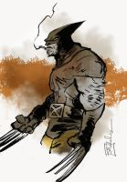 Wolverine by CartoonCaveman