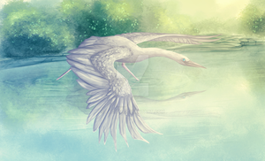 White Heron by Lacium