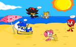 Sonic and Friends on the beach by KnucklesCoolEchidna
