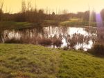 Sunset Pond 1 by LelouchArt