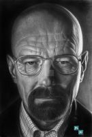 Heisenberg - Breaking Bad by Polonx